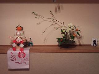 2011-01-06 17.15.31.jpg